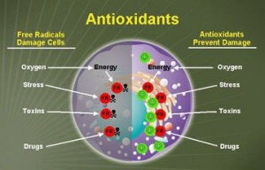 antioxidants_benefits